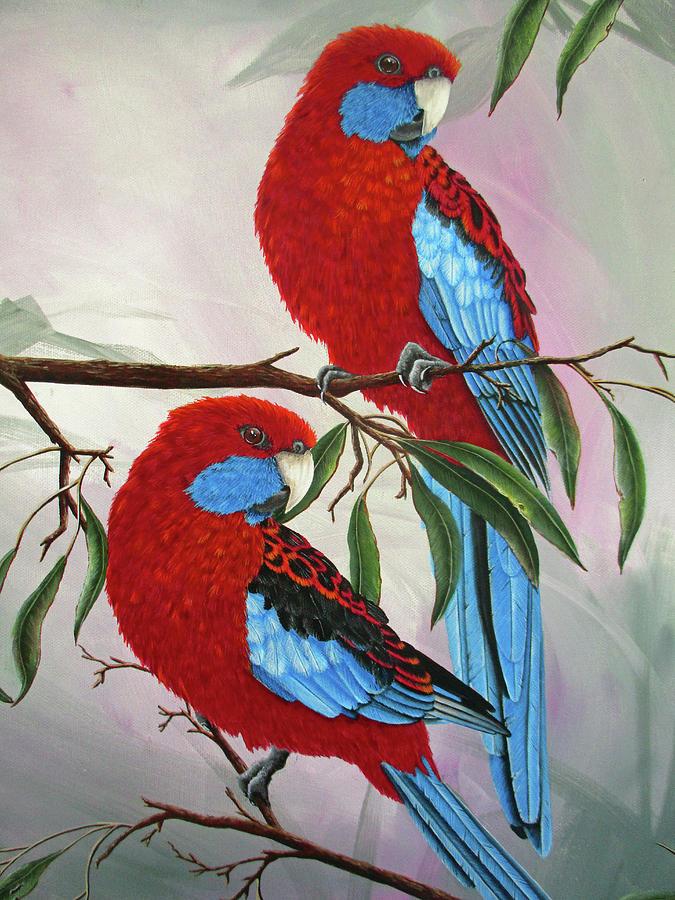 Crimson Rosella's 2 by Debra Dickson