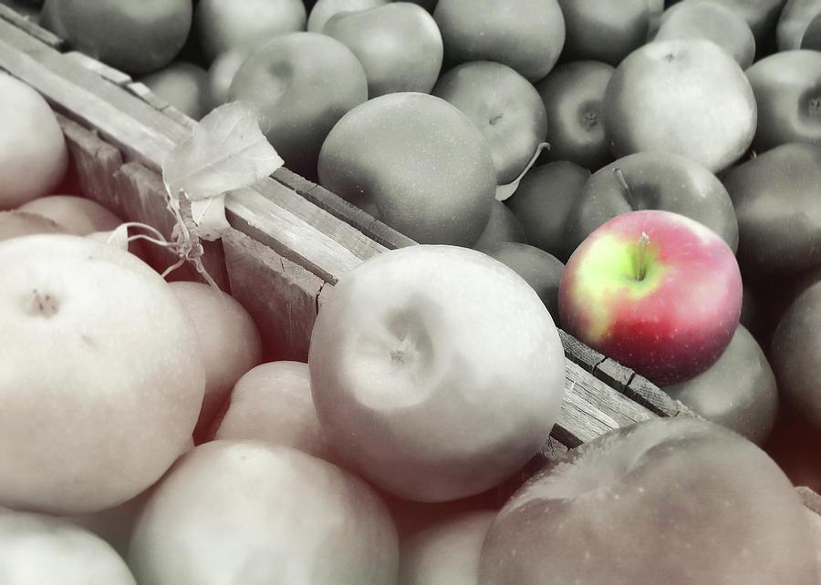 Fall Photograph - Crisp Harvest by JAMART Photography