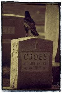 Croes Photograph by Jeanie Chadwick