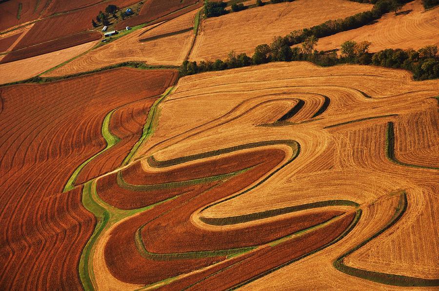 Crops Photograph by Nivesh Kochhal