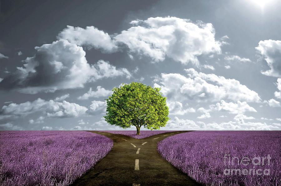 Crossroad Digital Art - Crossroad In Lavender Meadow by Giordano Aita