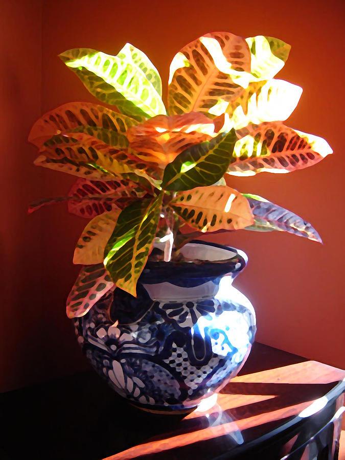 Potted Plant Photograph - Croton In Talavera Pot by Amy Vangsgard