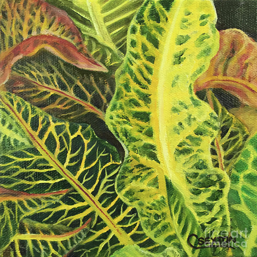 Croton Leaves Painting by Carol Sexton