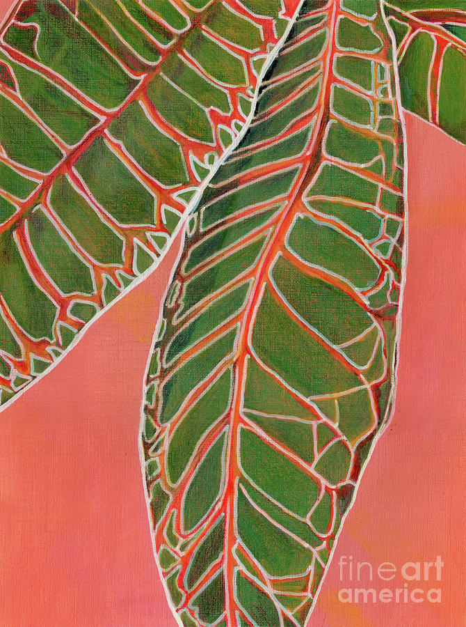 Plants Painting - Crotons Catching by Amelia at Ameliaworks