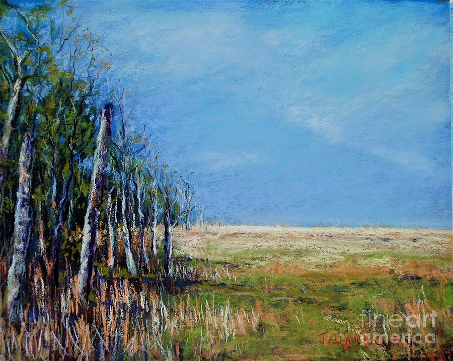 Landscape Pastel - Crow Creek Glow by Joyce A Guariglia