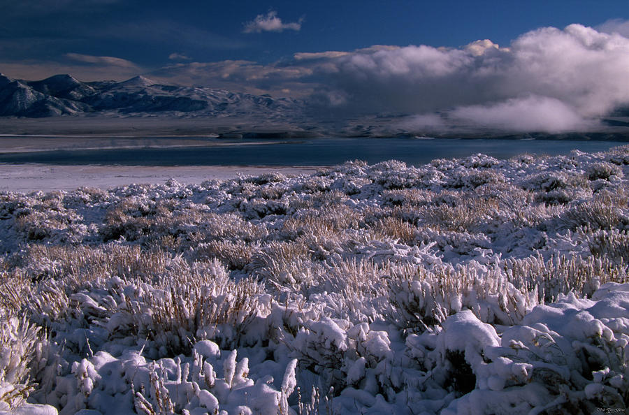 Crowley Lake Photograph - Crowley Lake by Soli Deo Gloria Wilderness And Wildlife Photography