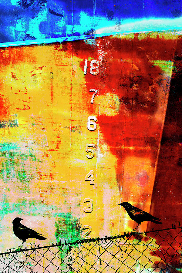 Mixed Media Mixed Media - Crows by the Numbers Mixed Media by Carol Leigh