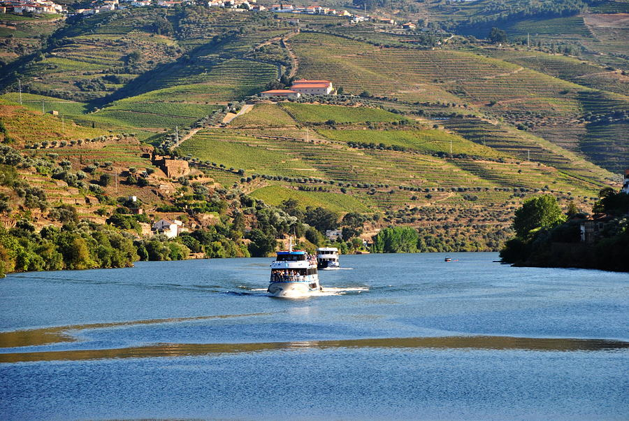 Portugal Photograph - Cruising Douro River Valley by Jacqueline M Lewis