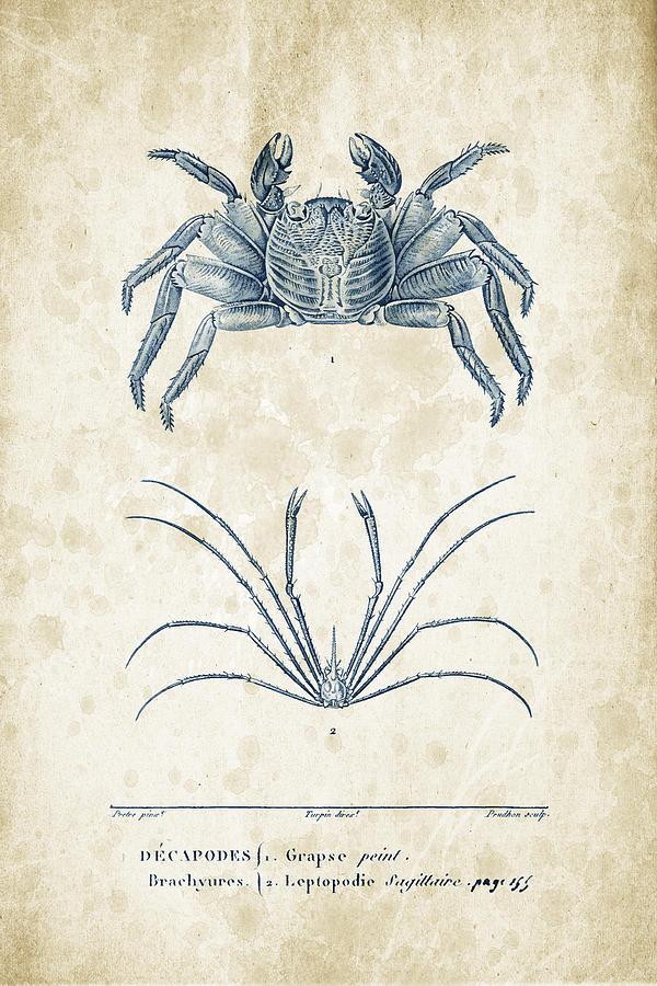 Crabs Digital Art - Crustaceans - 1825 - 14 by Aged Pixel