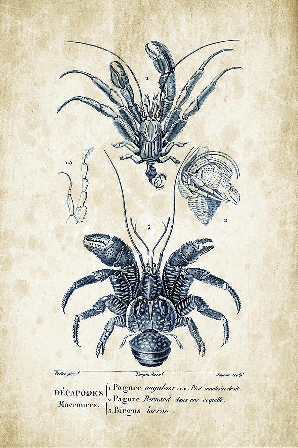 Crabs Digital Art - Crustaceans - 1825 - 28 by Aged Pixel