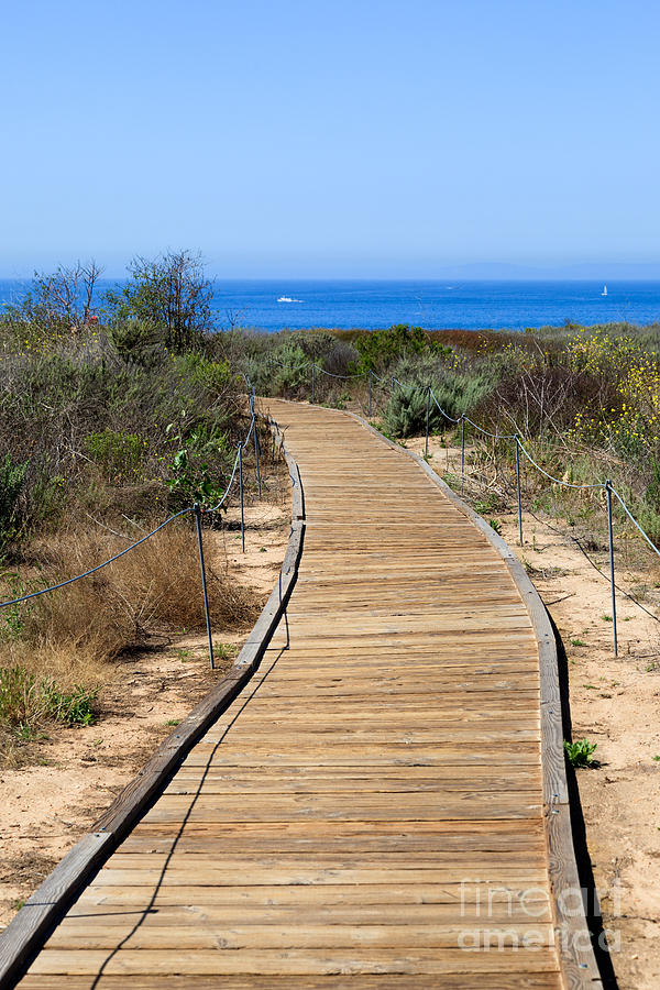 America Photograph - Crystal Cove State Park Wooden Walkway by Paul Velgos