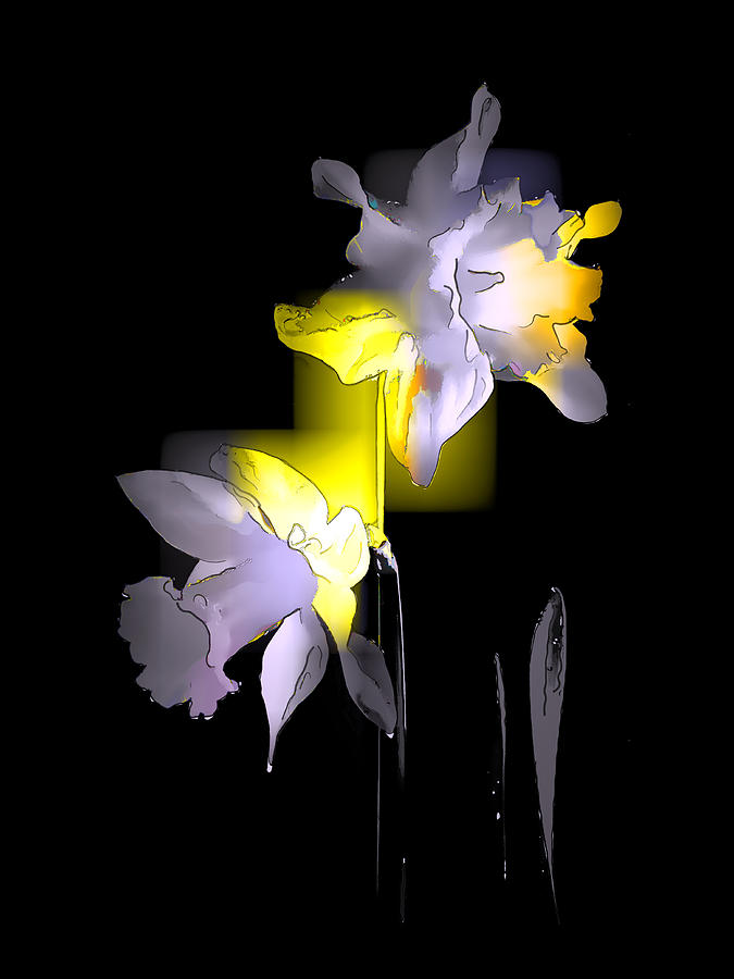 Cubist Daffodils Photograph