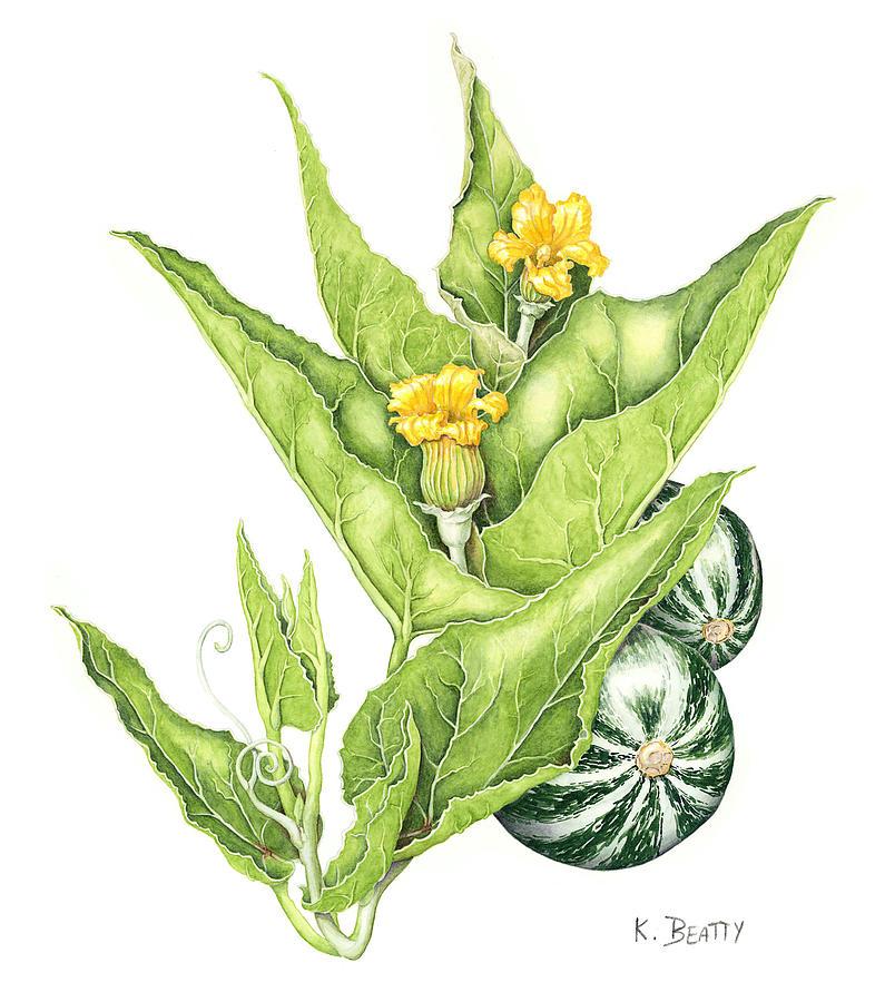 Botanical Painting - Cucurbita Foetidissima by Karla Beatty