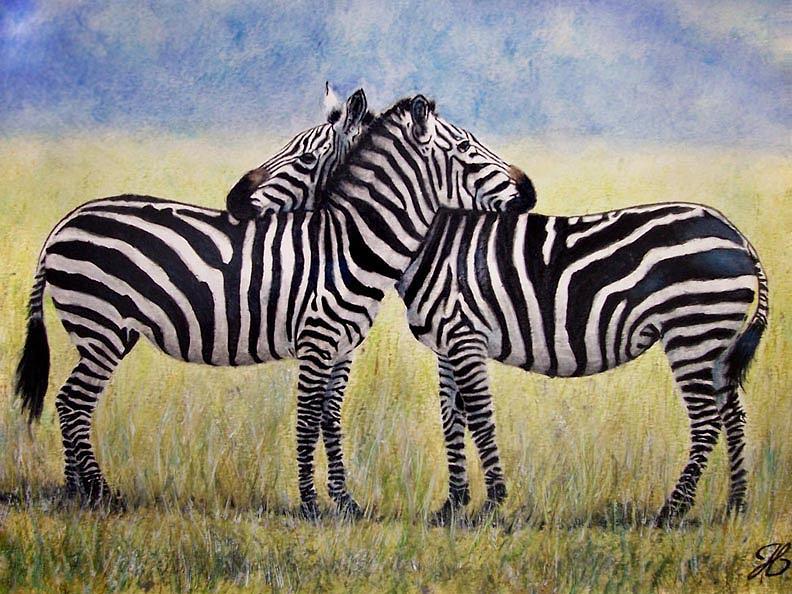 Zebras Painting - Cuddling Stripes by Jennifer Mellen