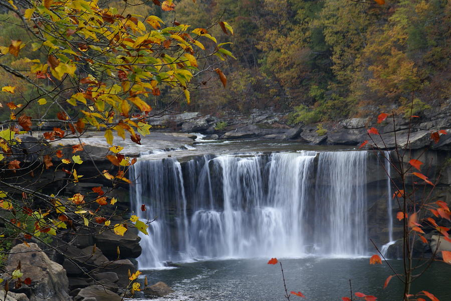 Landscape Photograph - Cumberland Falls In Gold by Bj Hodges