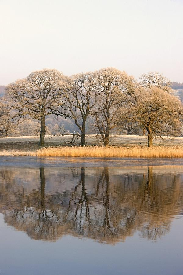 Autumn Photograph - Cumbria, England Lake Scenic With by John Short