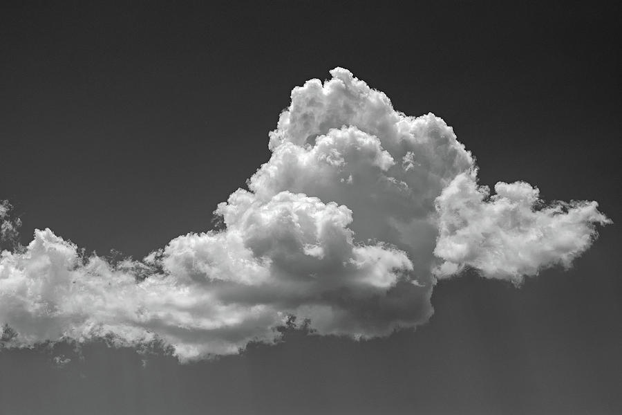 Cumulus Rising by Jason Coward