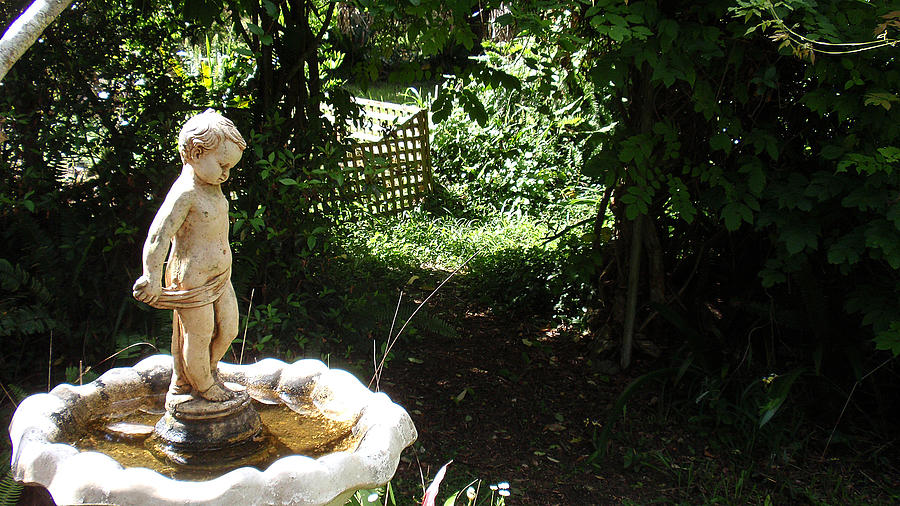 Cupid Photograph - Cupid Of The Garden by Edan Chapman