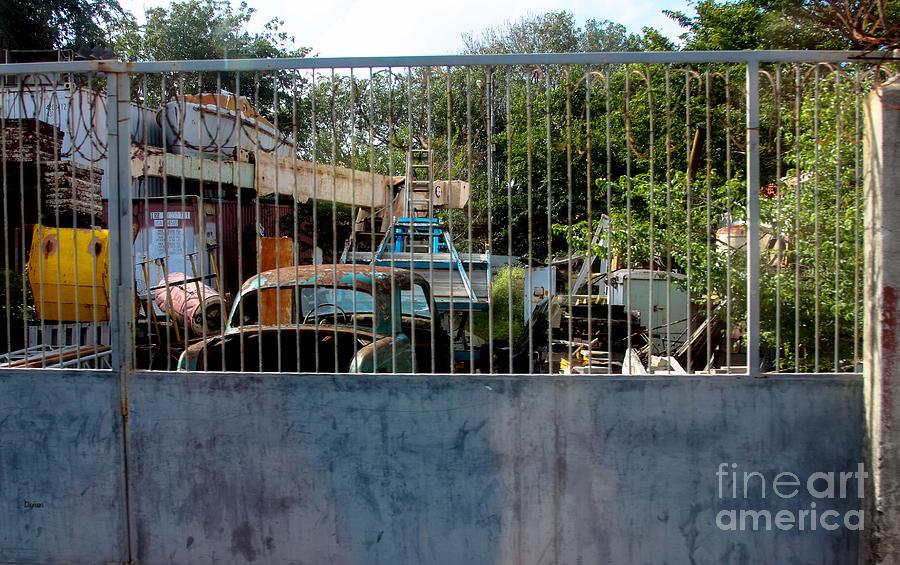 Curacao Photograph - Curacao Graveyard  by Steven Digman