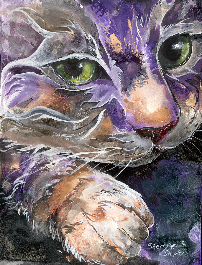 Cat Painting - Curiosity by Sherry Shipley