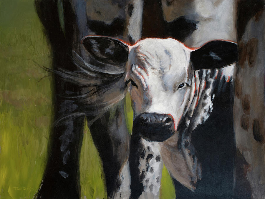 Acrylic Painting - Curious Calf by Christopher Reid