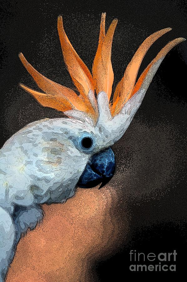 Digital Art Photograph - Curious Cockatoo  by Norman  Andrus