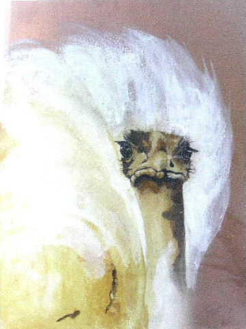 Animals Painting - Curious by Jane  Simpson