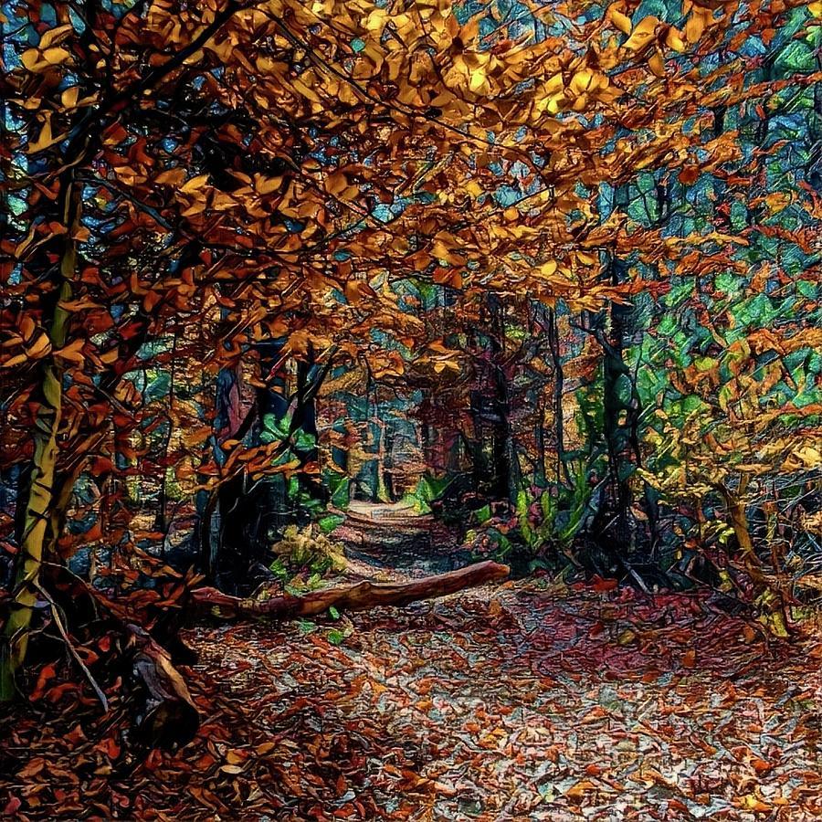 Fall Digital Art - Curious Path In Autumn by Richard Hinds