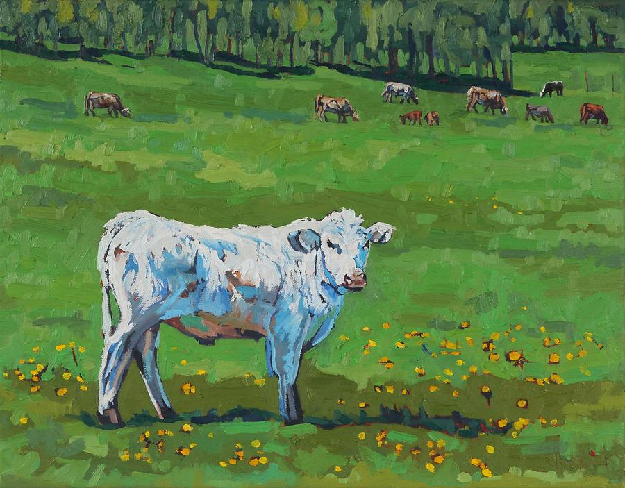 22nd Century Painting - Curious Steer by Phil Chadwick