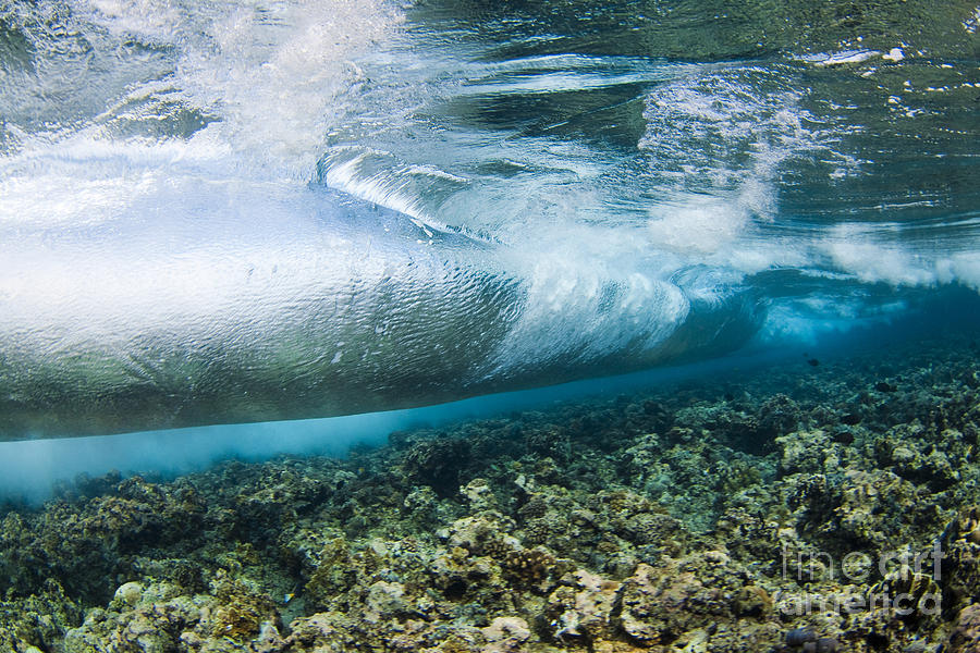 Abstract Photograph - Curl Of Wave From Underwater by Dave Fleetham - Printscapes