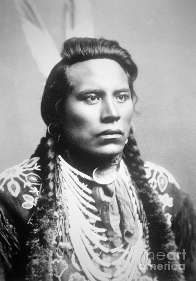 Scout Photograph - Curley, of the Crow tribe, one of Custers scouts by American School
