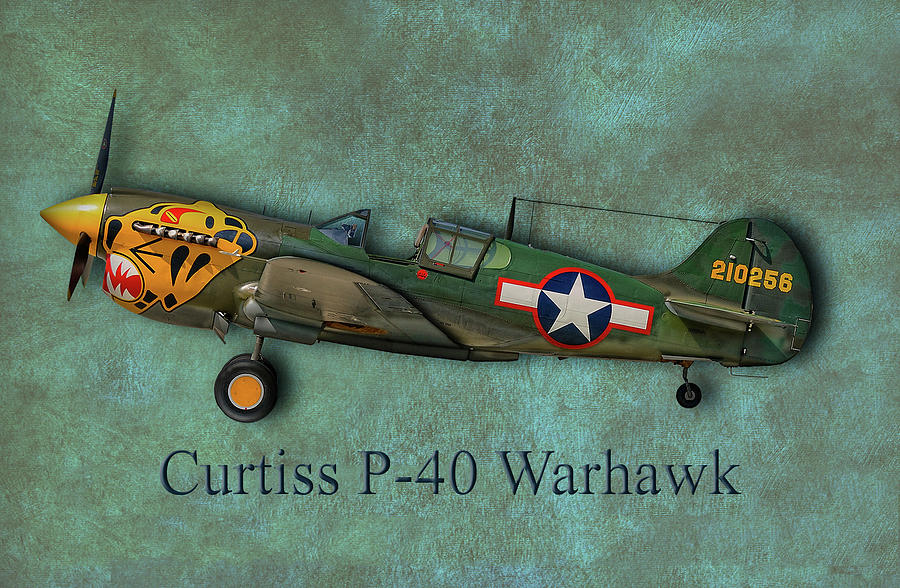 Curtiss P-40 Warhawk Photograph by Robert Hayes