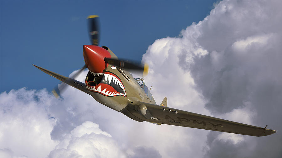 Flying Tigers Photograph - Curtiss P-40n Warhawk by Larry McManus