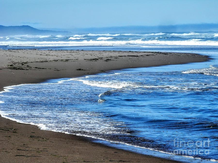 Curves and waves by L Cecka