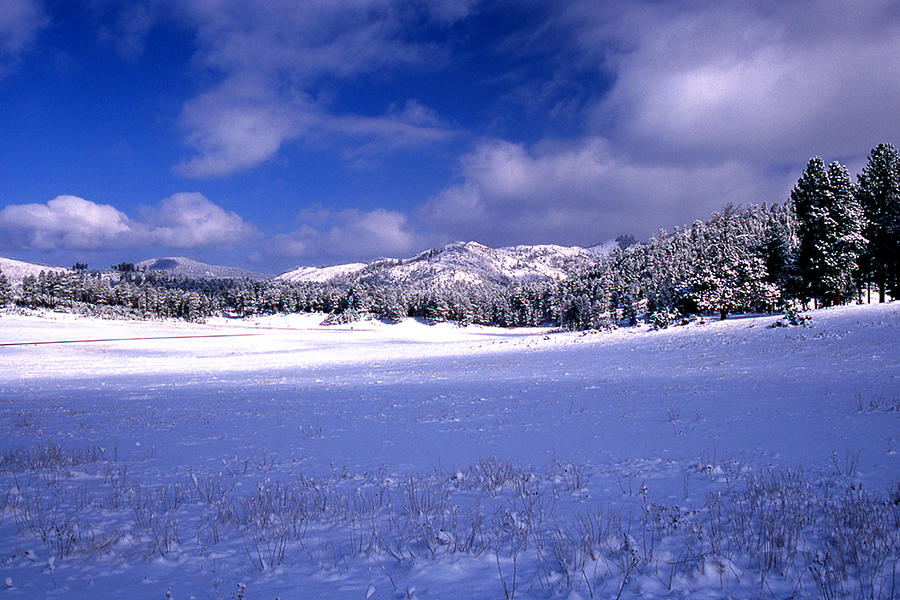 State Park Photograph - Custer State Park by Barry Shaffer
