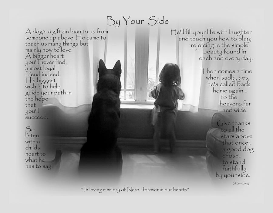 Quote Photograph - Custom Paw Print   Nero by Sue Long