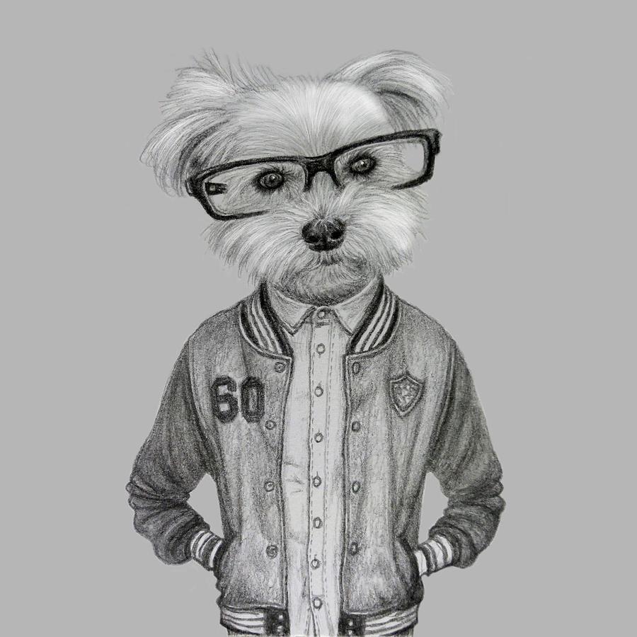 cute-eyeglasses-dog-boy-wind- ...