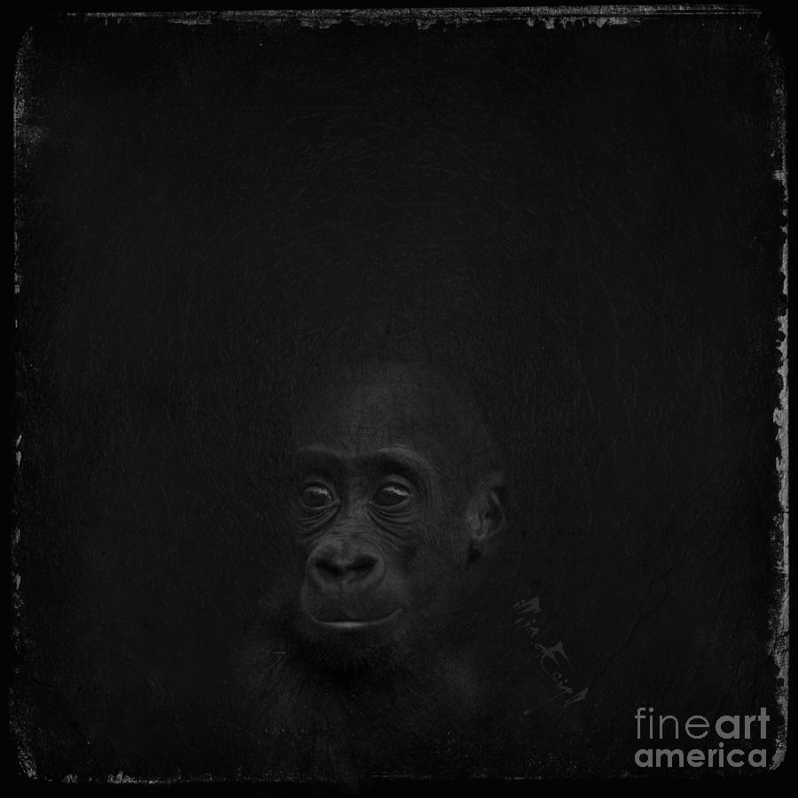 Gorilla Digital Art - Cute Gorilla Baby by Maria Astedt