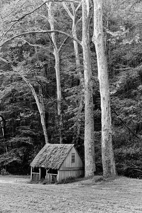 Cuttalosa Spring House Photograph