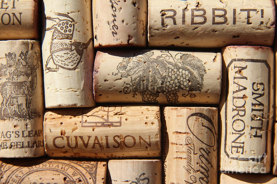 Napa Valley Wine Auction Photograph - Cuvaison by Anthony Jones