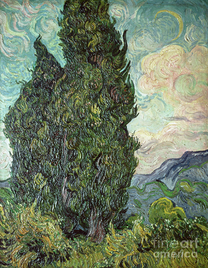 Cypresses Painting - Cypresses by Vincent Van Gogh