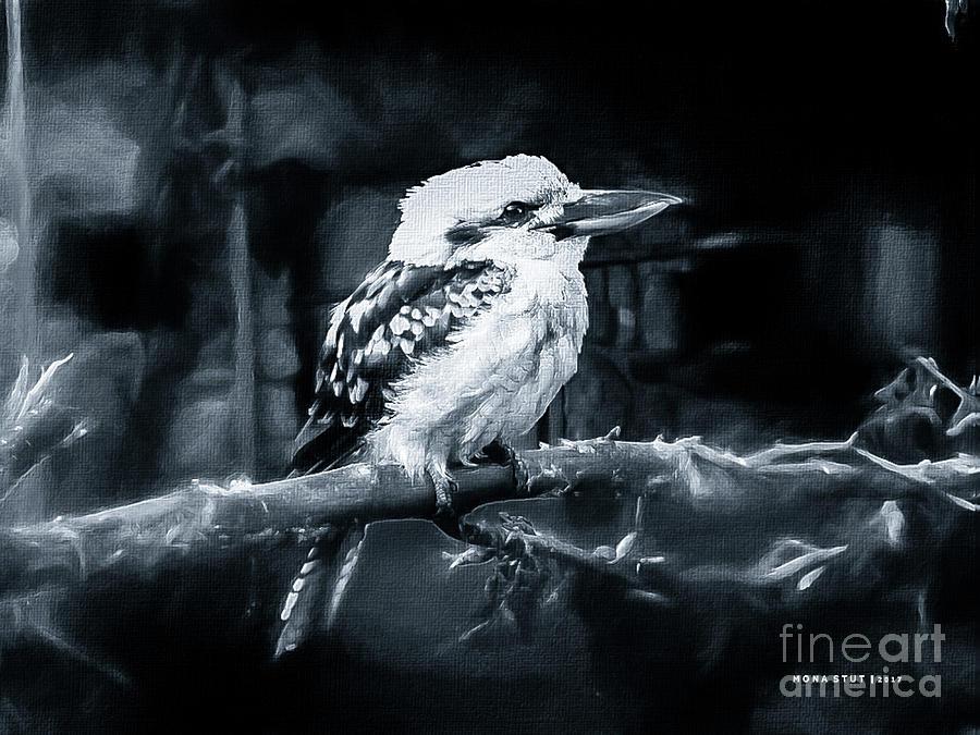 Kookaburra Dacelo Novaeguineae Bw Photograph