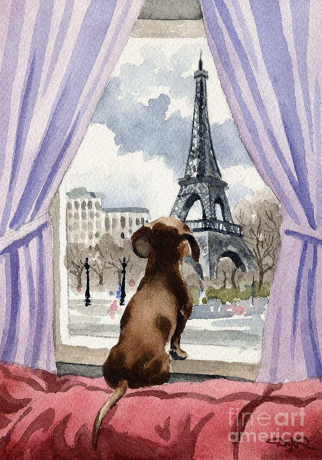 Dachshund Painting - Dachshund In Paris by David Rogers