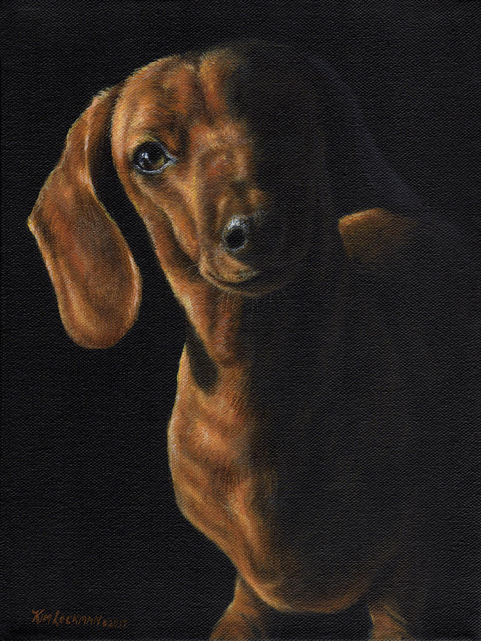 Dachshund in the Spotlight by Kim Lockman