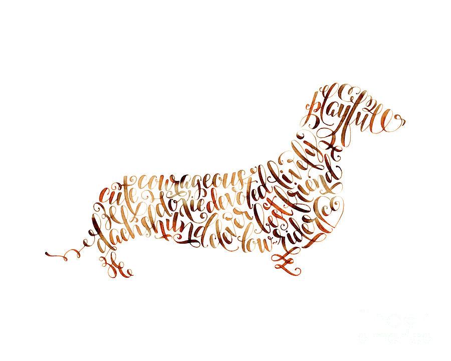 Dachshund Painting - Dachshund by Laura Bell
