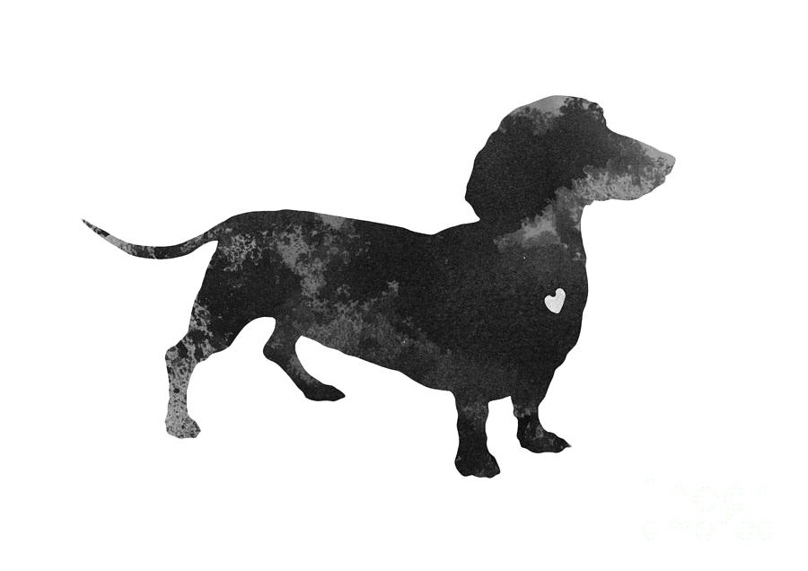 Dachshund Watercolor Black Silhouette Painting By Joanna