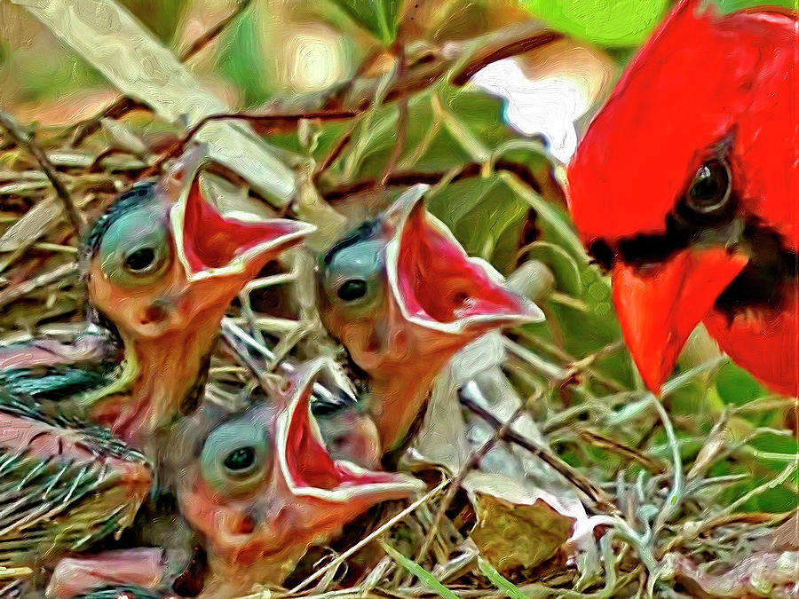 Birds Digital Art - Dad by Steve Kobb