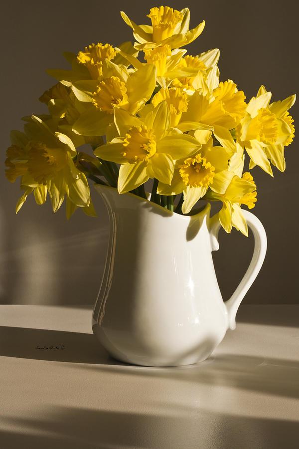 Daffodils Photograph - Daffodil Filled Jug by Sandra Foster