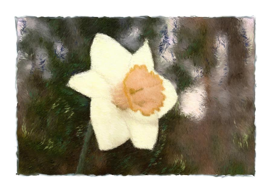 Abstract Photograph - Daffodil by Sandy Belk