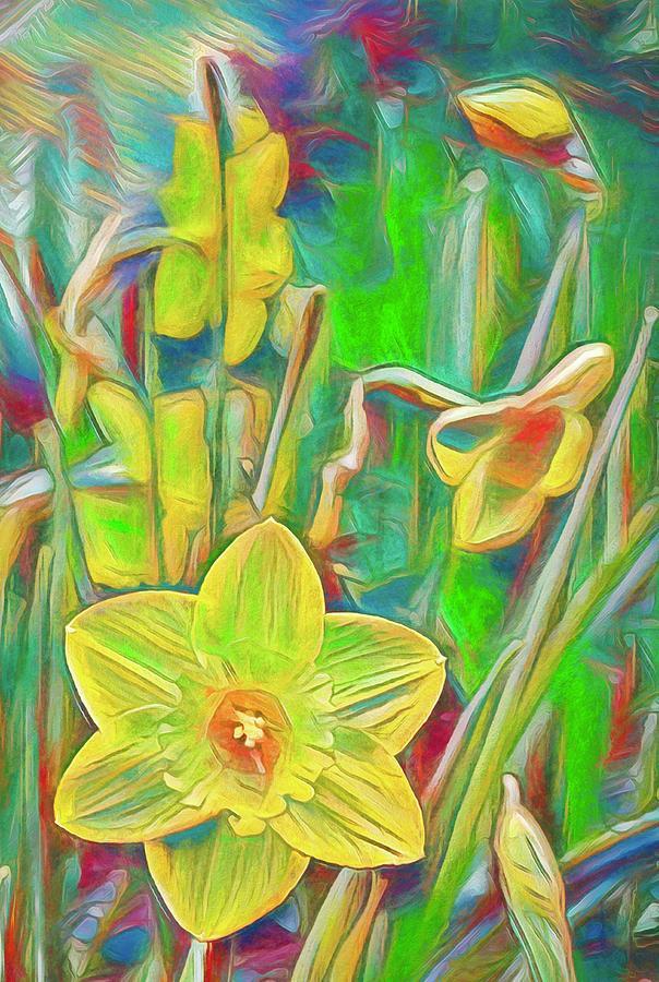 Daffodils 11 by Pamela Cooper